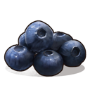 Черника (Blueberries)