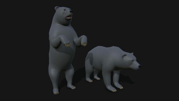 beartopology